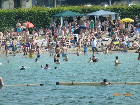 Lac Léman (Lac de Genève) : Geneva beach
