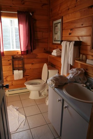 Stanley Bridge Country Resort: Only one washroom for the whole cottage