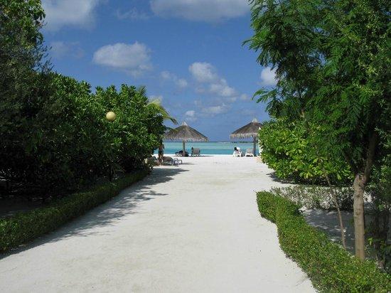 Cinnamon Dhonveli Maldives: Paradise