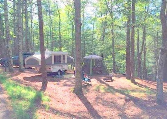 Nickerson State Park Campgrounds: Area 7