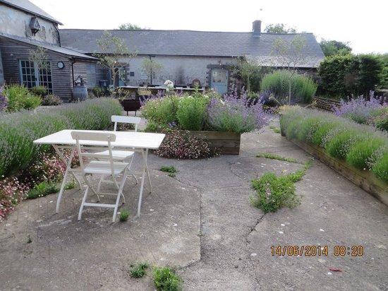 Sutton Mawr Farm: Courtyard