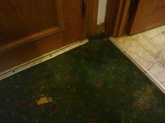 Marina Palace: filthy carpets