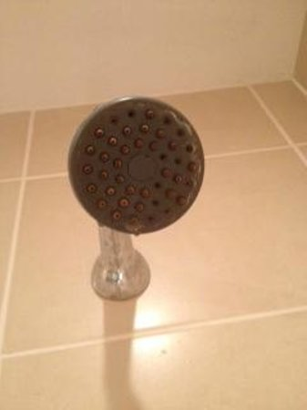 Crowne Plaza Felbridge Hotel : Scum on shower head