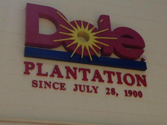 Oahu Spot Tours: Dole Plantation