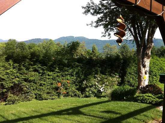 Brookside Mountain Mist Inn: Mountain view from terrace