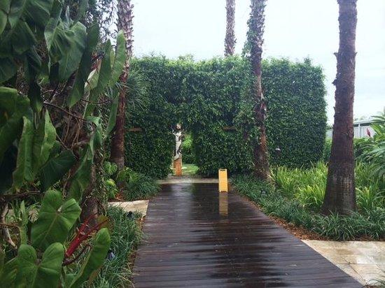 The Standard, Miami: The garden area