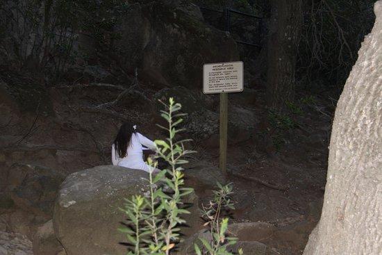Chumash Painted Cave State Historic Park: Оставляем след о нашем посещении в специальном журнале