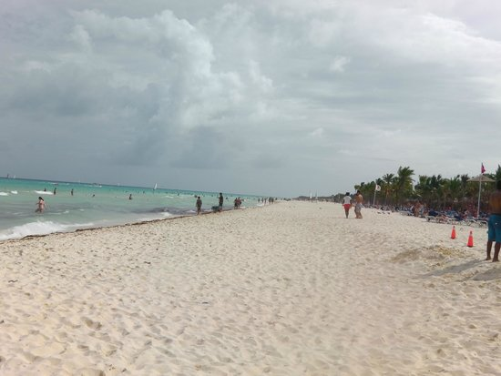 Viva Wyndham Maya : beach