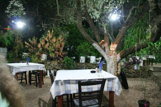 Polyphemus Restaurant: Polyphemus Garten