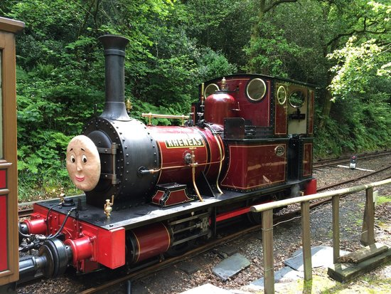 Talyllyn Railway: Rheneas on his tea break during the May Duncan Day in 2014. Was the fireman on the first trip an