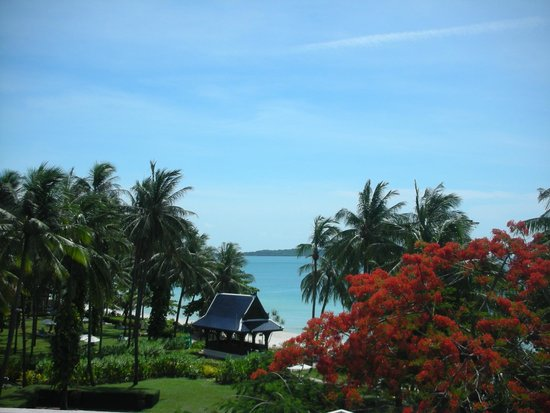 Centara Grand Beach Resort Samui : Amazing view