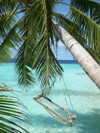 Biyadhoo Island Resort : Beach