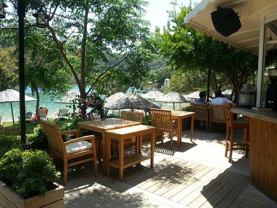 Suncity Hotel & Beach Club: Sun City beach area