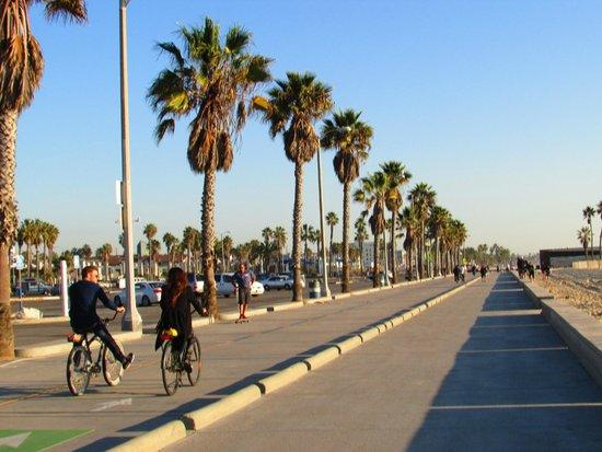 South Bay Bicycle Trail: Trilha de Bicicleta