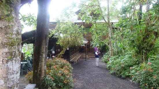 Bellavista Cloud Forest: Bar & Office area & Hummingbird Central