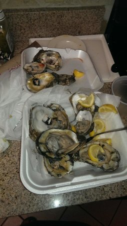 Original Shuckers Raw Bar
