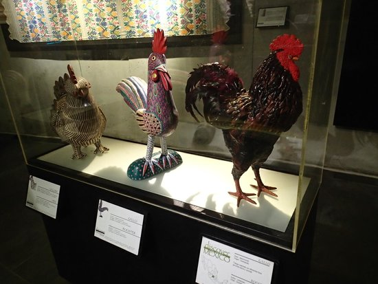Discover Mexico Cozumel Park: Chicken statues made by different artists