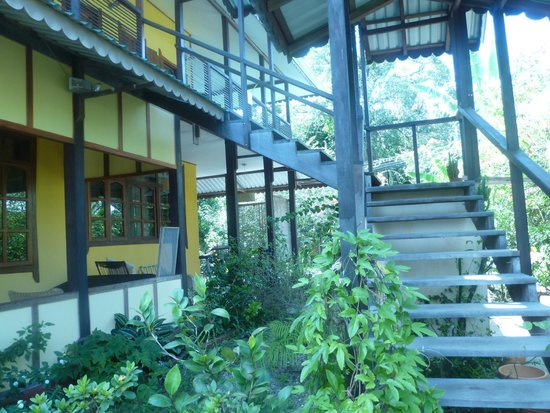 Jacaranda Hotel and Jungle Garden: view from verandah
