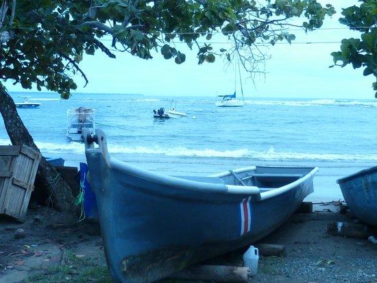 Jacaranda Hotel and Jungle Garden: beach 5 mins away