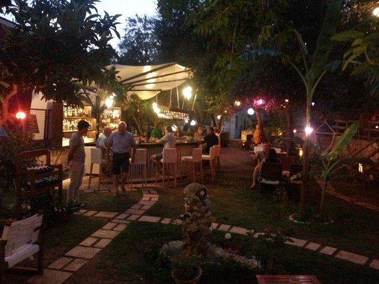 Wonderful Botanik Garden Bar: Botanik Bar, Kalkan