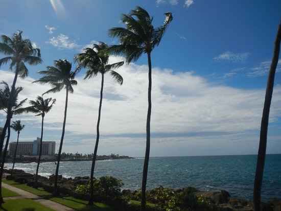 The Condado Plaza Hilton: more views from hotel