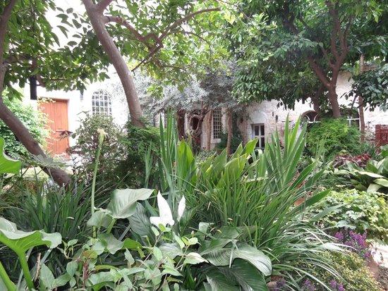 The American Colony Hotel: Las favoritas del Pachá turco solazaban su vista en este jardin interior.