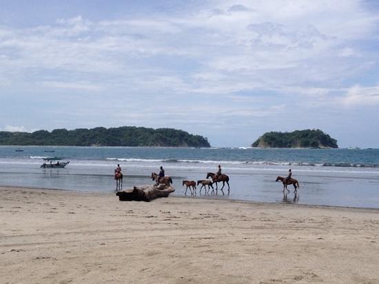 Gusto Beach : Samara Beach