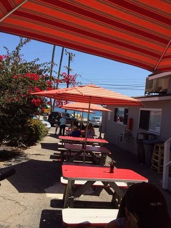 Malibu Seafood Fresh Fish Market and Patio Cafe : South Side of Restaurant Picnic Benches