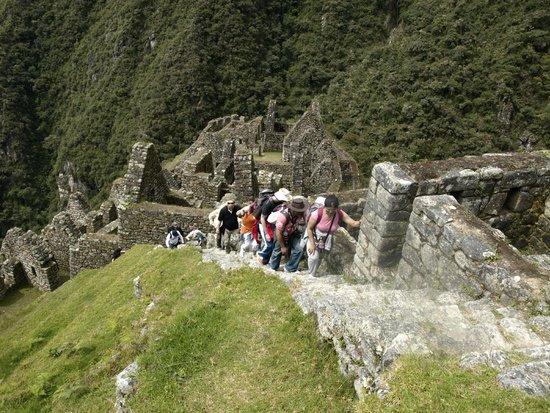 Inca Trail: El grupo subiendo de Wiñayhuayna camino inca a Machupicchu