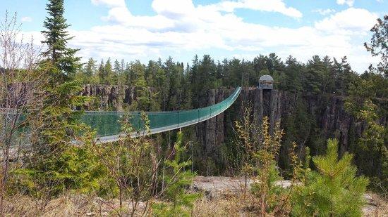 Eagle Canyon Adventures : Bridge