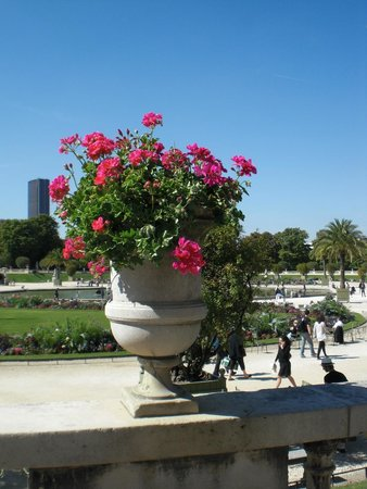 Beautiful flowers in the jardin du luxembourg picture of luxembourg gardens paris tripadvisor - Jardin de luxembourg hours ...