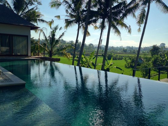 Villa Santun: Infinity pool with great view in King Villa