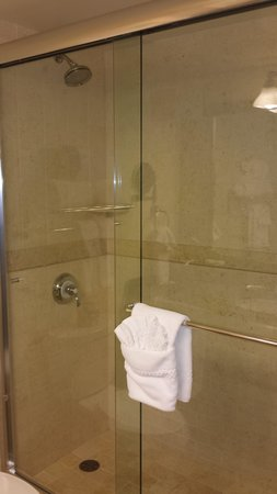 The Abbey Resort & Avani Spa : Spacious shower