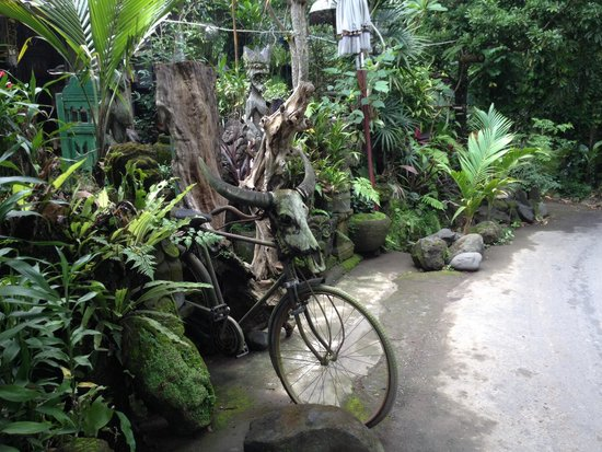 Hire a writer scooter in bali indonesia