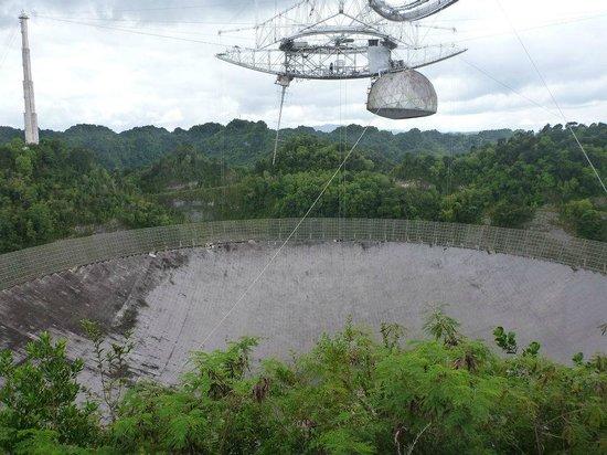 Puerto Rico Radio Telescope Tours
