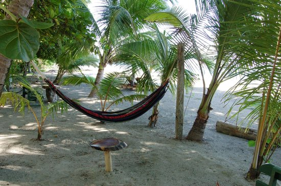 Fenix Hotel - On The Beach: Our favorite area - the hammocks!