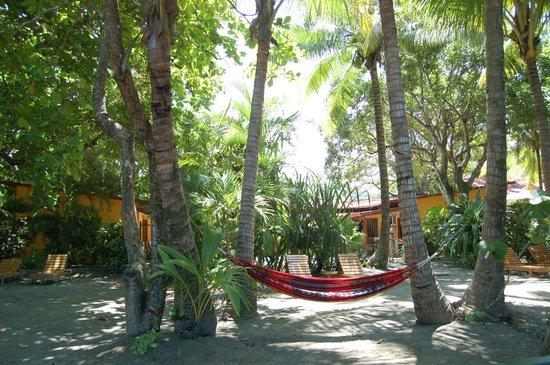 Fenix Hotel - On The Beach : Hotel grounds