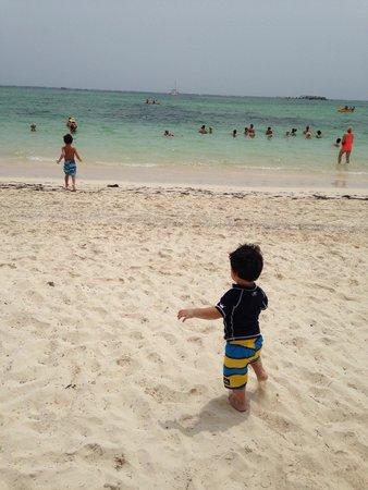 Barcelo Bavaro Palace: Playa