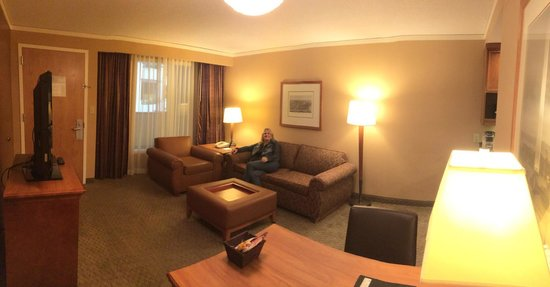 Embassy Suites by Hilton Crystal City - National Airport : Sitting area with pull out couch.