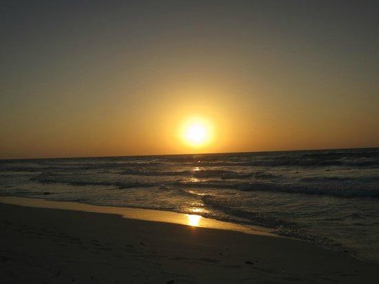 Secrets The Vine Cancún: Sunrise