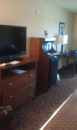 Holiday Inn Express Hotel & Suites Mount Airy South: room