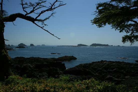 Wild Pacific Trail : Glimpse of the Pacific past the black rocks