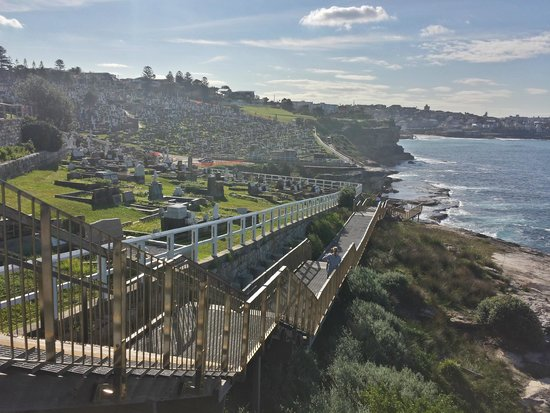 Bondi to Coogee Beach Coastal Walk : Waverly Cemetery