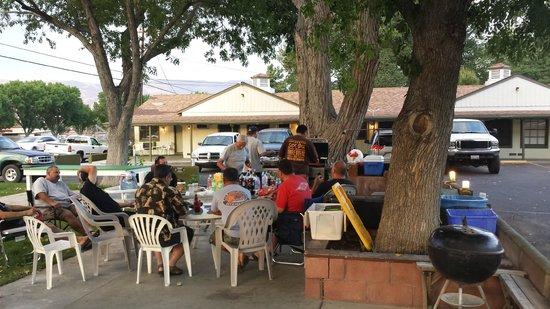 The Trees Motel : BBQ Patio