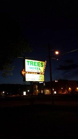 The Trees Motel : Hotel