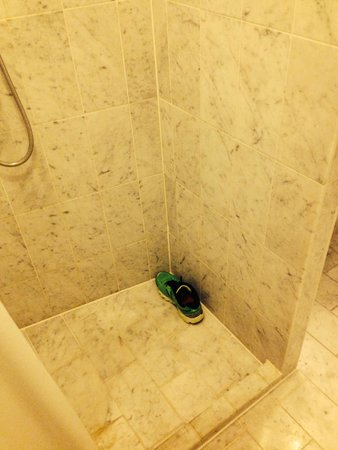 Andersen Boutique Hotel: Very tiny shower, my size 11 shoe for perspective