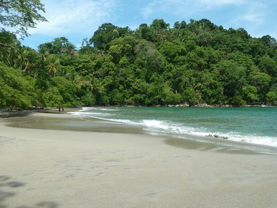 Johan Chaves - Nature and birding Tours: Beautiful beach within the park