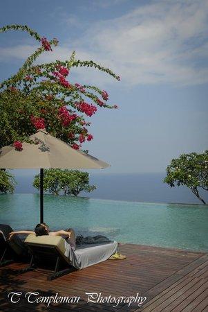 Bulgari Resort Bali: Main pool with a book