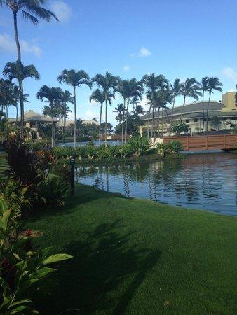 Kauai Beach Villas : Views of buildings and grounds