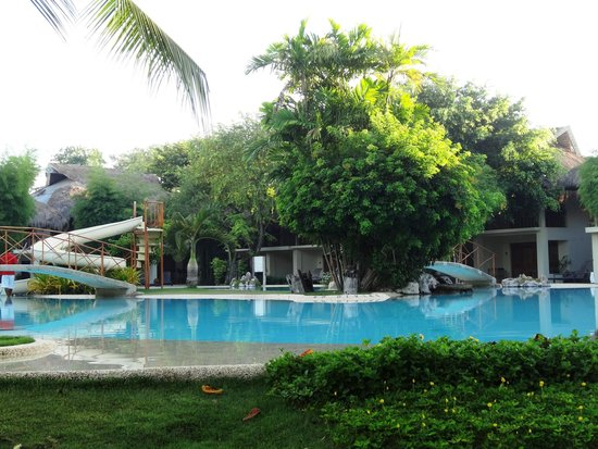Bluewater Maribago Beach Resort: The swimming pool during early morning.
